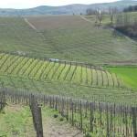 nccpallanza_monferrato